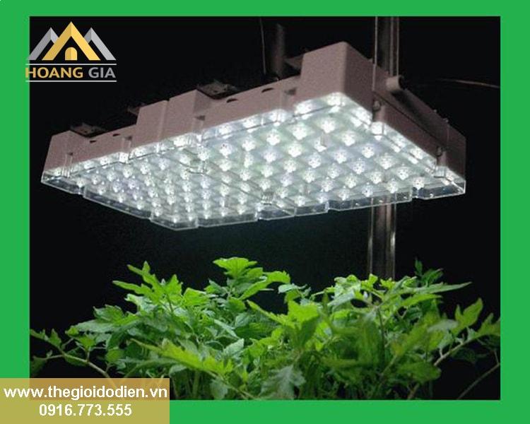 Đèn led chiếu sáng và những công dụng nhiều người chưa biết đến