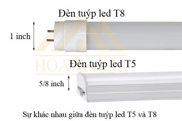 Sự khác nhau giữa đèn tuýp led T5 và T8