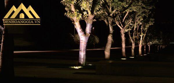 Sử dụng đèn âm sàn ngoài trời công suất lớn chiếu sáng cho những gốc cây to