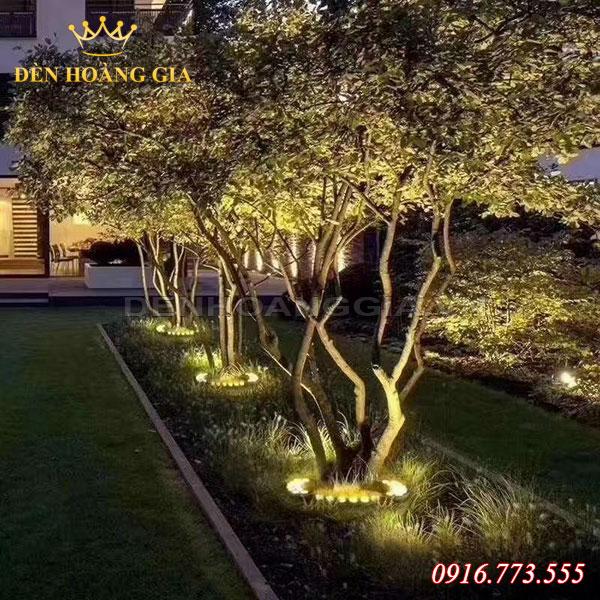 Sử dụng đèn chiếu cây bán nguyệt để chiếu sáng gốc cây